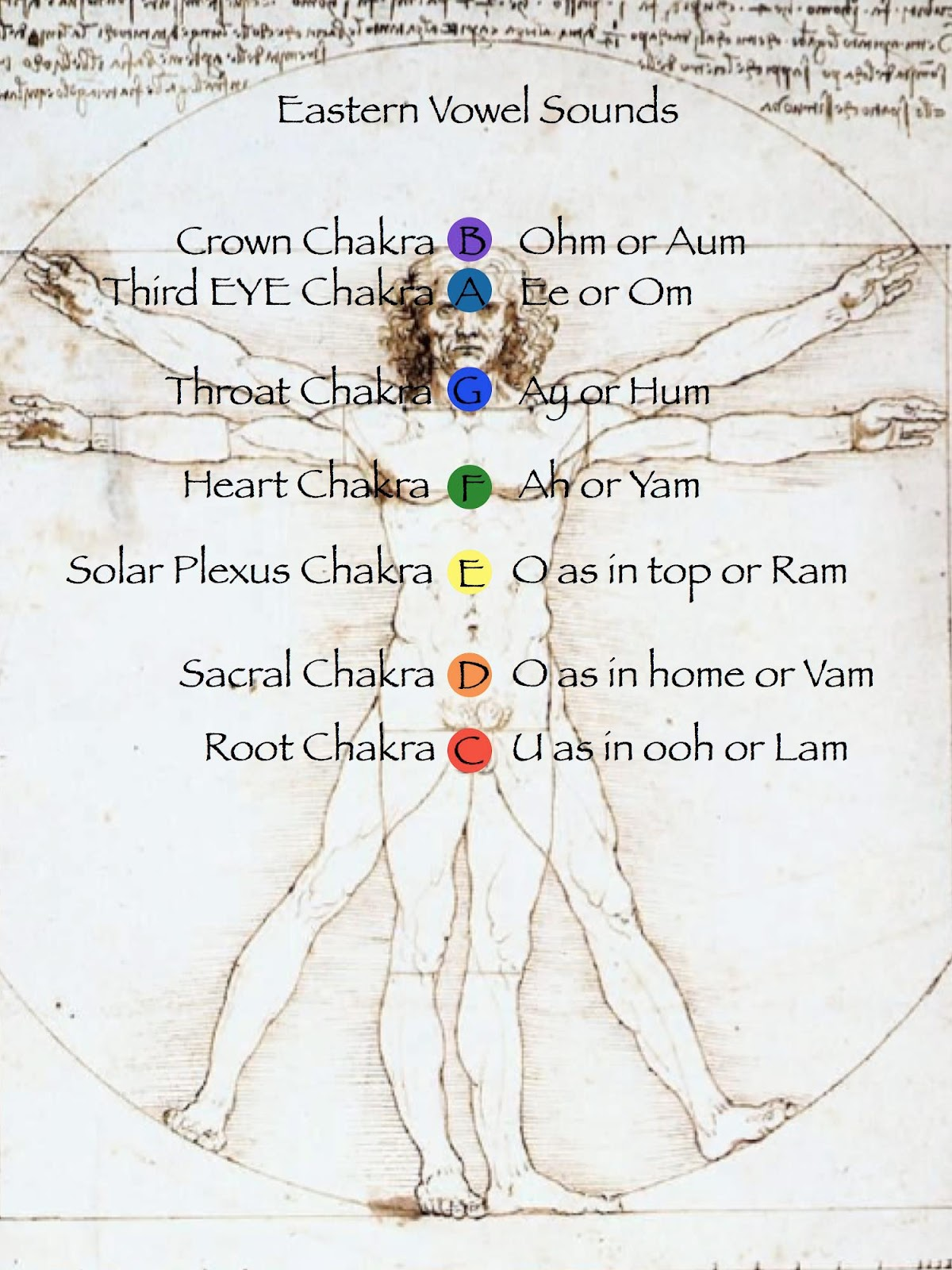 hight resolution of the chakras are energy points in the body although invisible to the human eye chakras can be seen by people who are capable of seeing etheric energy