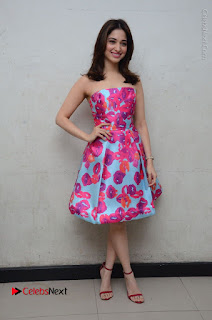 Actress Tamanna Latest Images in Floral Short Dress at Okkadochadu Movie Promotions  0170.JPG
