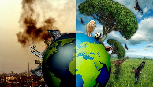 تلوث الأرض