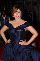 Payal Ghosh aka Harika in Dark Blue Deep Neck Sleeveless Gown at 64th Jio Filmfare Awards South 2017 ~  Exclusive 016.JPG