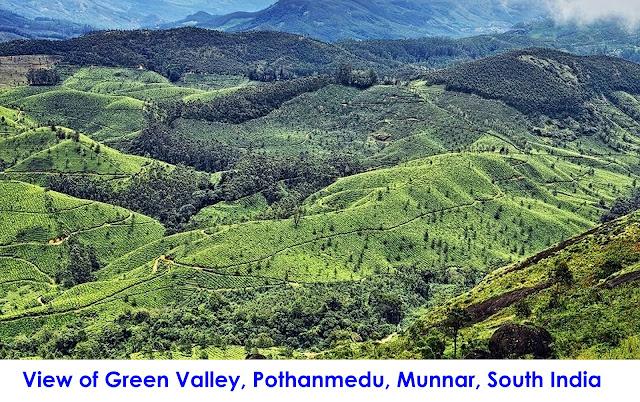Munnar Attractions : Pothanmedu Munnar