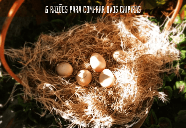 Comprar ovos caipiras