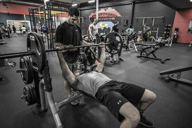 Mối liên hệ giữa thần kinh và cơ bắp