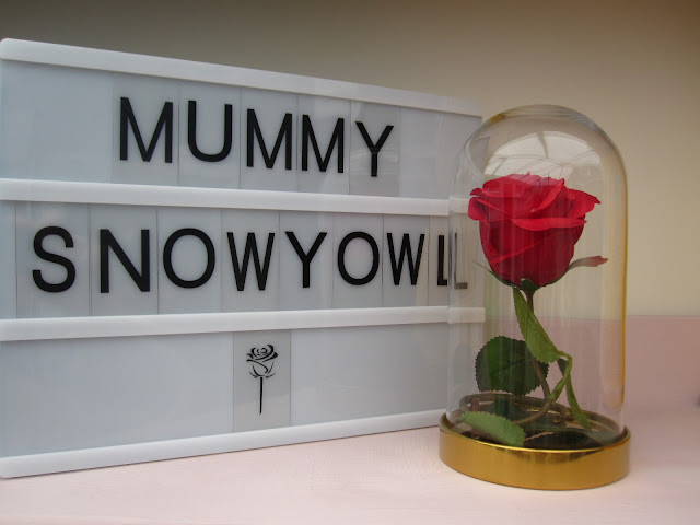 Rose in a glass dome, next to a lightbox that says Mummy Snowy Owl