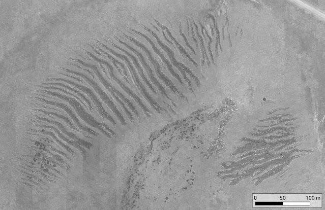 Glaciers and enigmatic stone stripes in the Ethiopian highlands