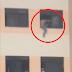 Mulher ameaça se jogar do 2º andar do Hospital Regional de Santo Antônio de Jesus; Veja