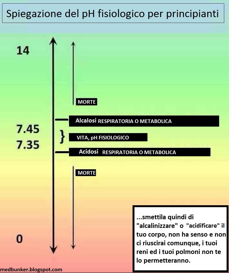 acido urico 6.20 niveles normales del acido urico en sangre hierbas medicinales para curar acido urico