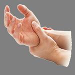 wrist in spanish