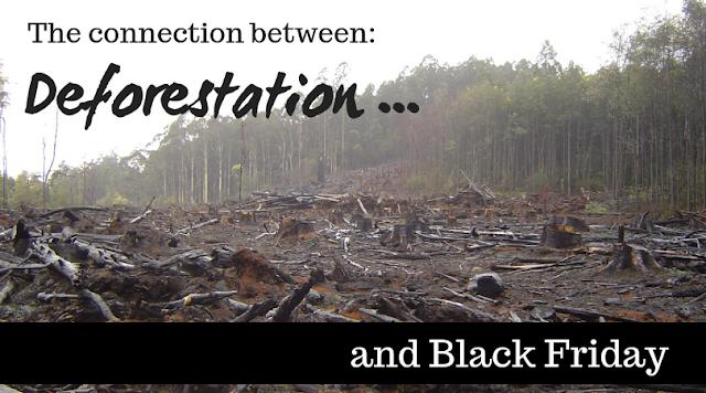 Consumerism fuels deforestation