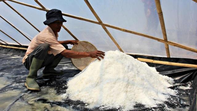 Curhat Petambak Madura, 2.600 Ton Garamnya Tak Laku