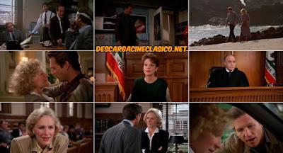 Al filo de la sospecha (1985) Jagged Edge - Ver Capturas Online
