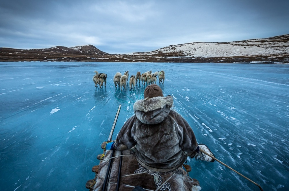 The 100 best photographs ever taken without photoshop - Dog sledding in Greenland
