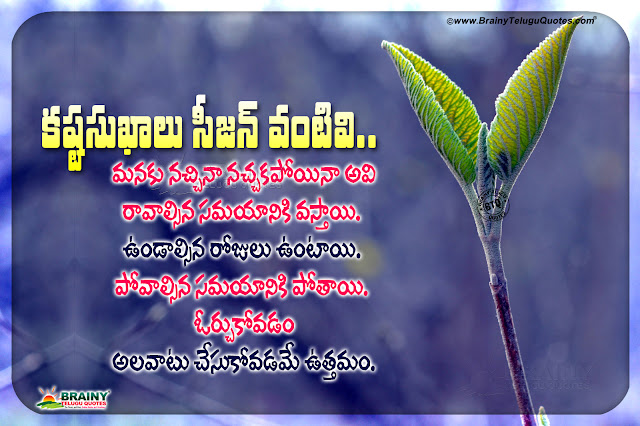 wise words in telugu, best life changing words in telugu, telugu motivational quotes