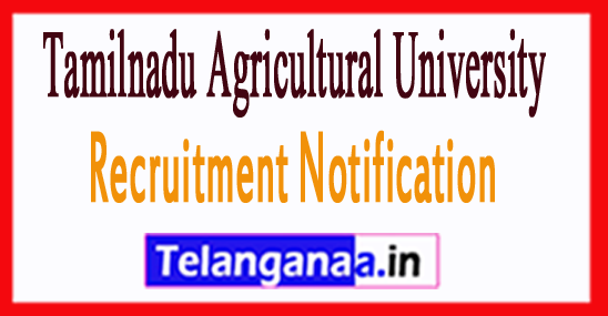 Tamilnadu Agricultural University TNAU Recruitment Notification 2017