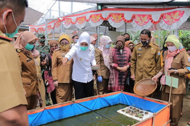 Wakil Walikota Palembang, Fitrianti agustinda Apresiasi Poktan di Talang Jambe