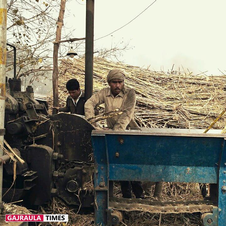sugarmill-in-india