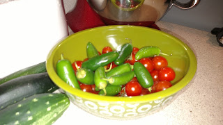 Jalapeno Peppers from Straw Bale Garden