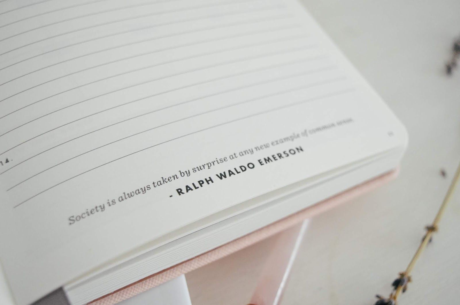 Daily Goal Setter Planner by Mal Paper, Dalry Rose Blog, UK Lifestyle Blog