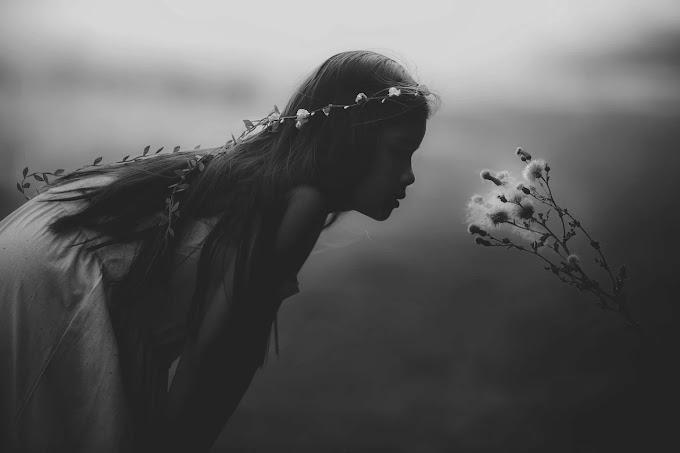 The Fairy Reel (La danza de las hadas) de Neil Gaiman