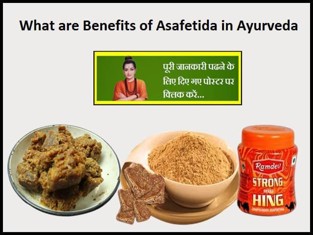 Benefits of Asafetida in Ayurveda