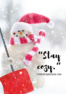 """Stay Cozy""""