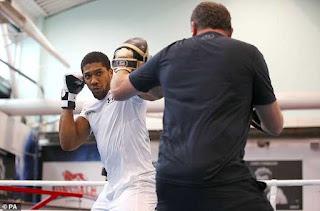 heavyweight boxing champion anthony joshua