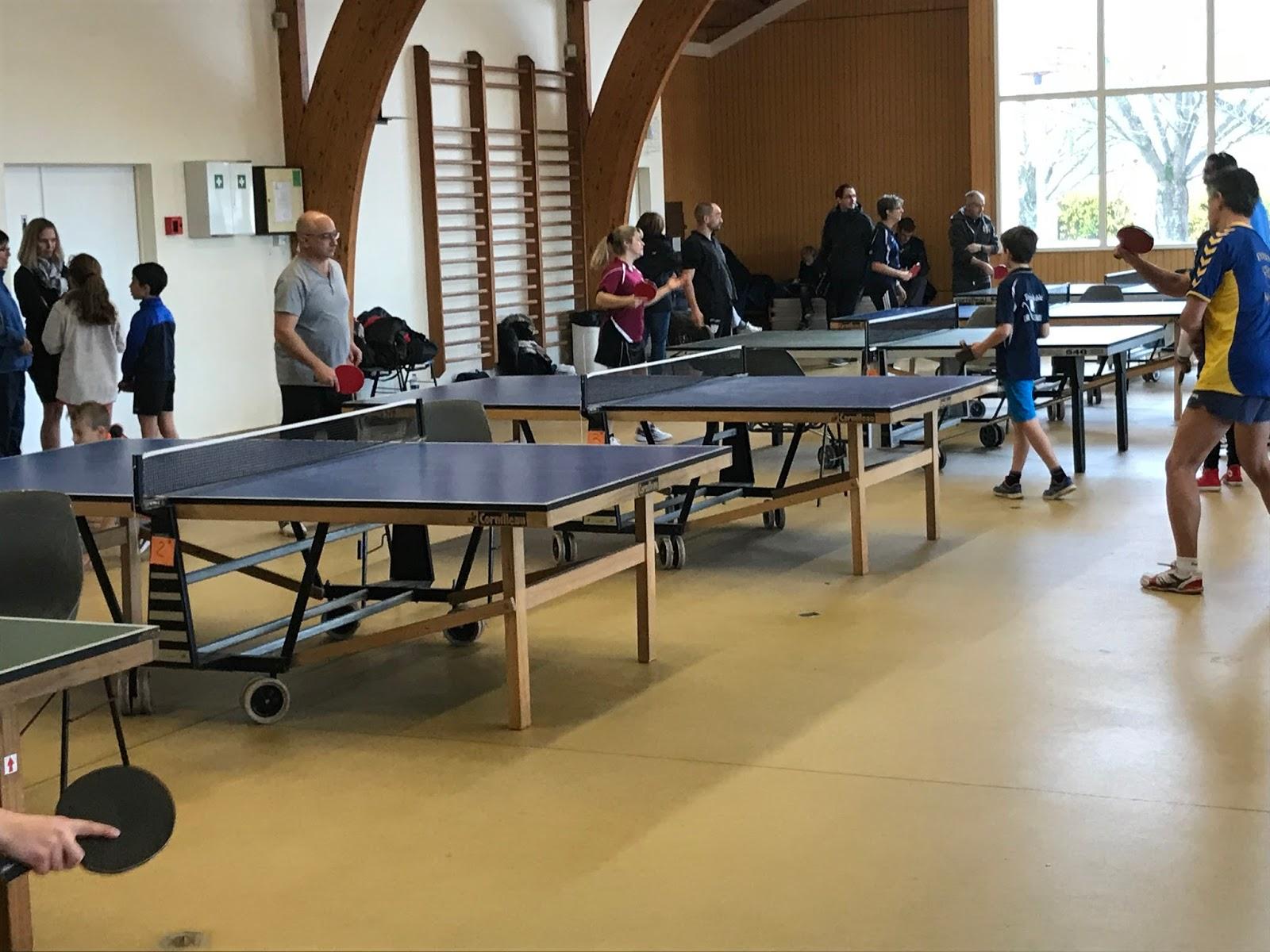 Publi par patrick septiers 09 02 for Table tennis 6 0
