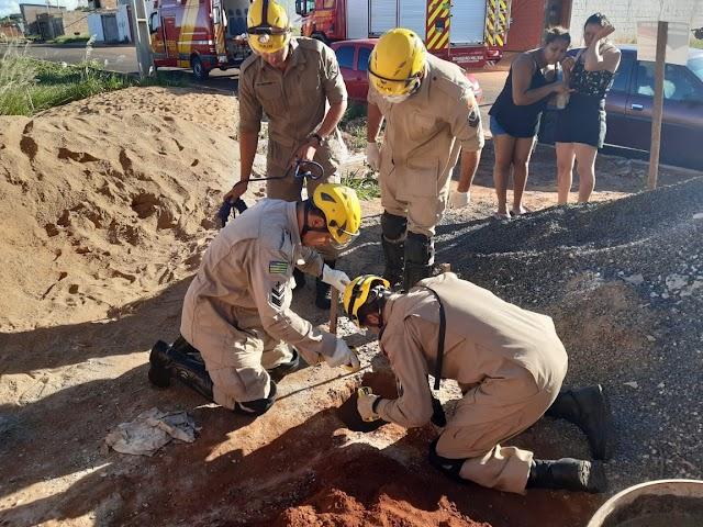 Rio Verde: Bebê cai em buraco de mais de 3 metros de profundidade