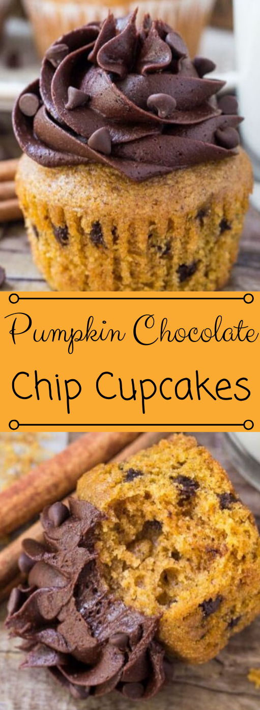 Pumpkin Chocolate Chip Cupcakes #desserts #cakes #easy #recipe #cupcakes