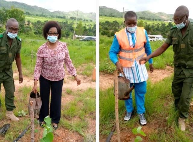 Environnement : les  députés Molgah Abougnima-Kadjaka et Torou Tétou mobilisent les populations de Doufelgou dans une vaste campagne de reboisement