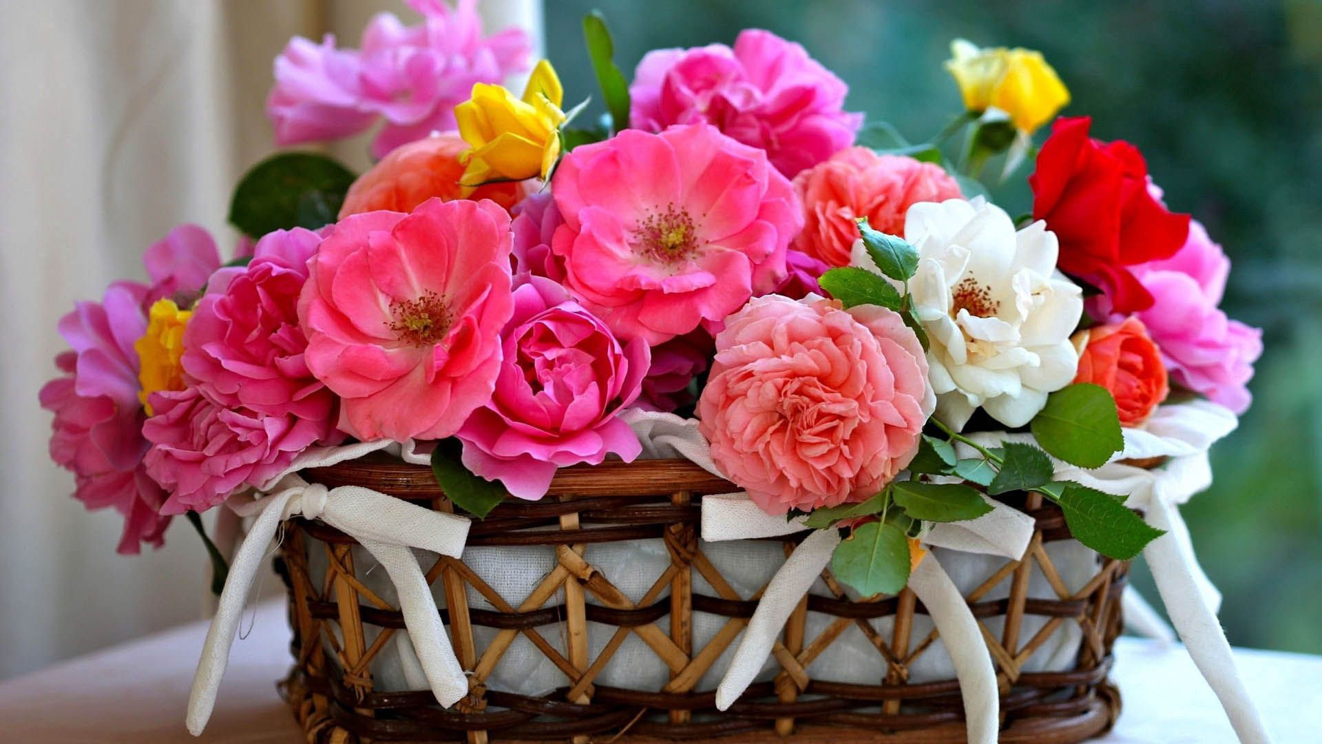 colorful roses inside the bamboo basket in blur green background HD flowers