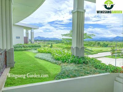 Tukang Taman Gresik | Jasa Tukang Taman Gresik