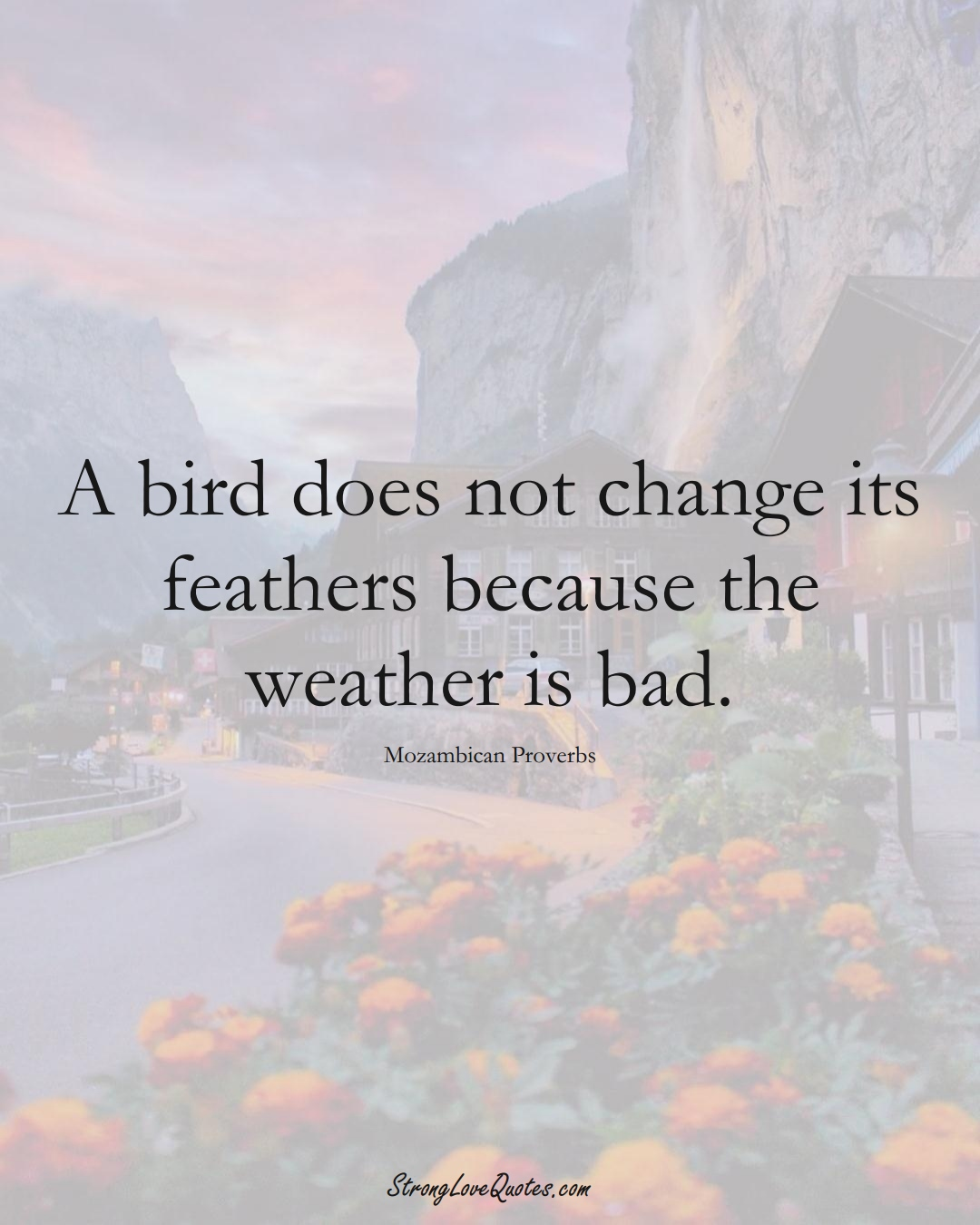 A bird does not change its feathers because the weather is bad. (Mozambican Sayings);  #AfricanSayings
