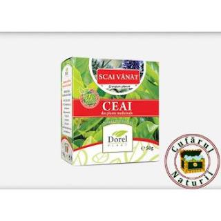 Beneficiile ceaiului Scai Vanat