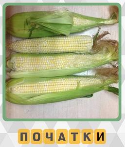 лежат несколько початков кукурузы на столе спелые и готовы к употреблению