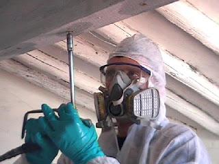 aplicador control termitas valladolid