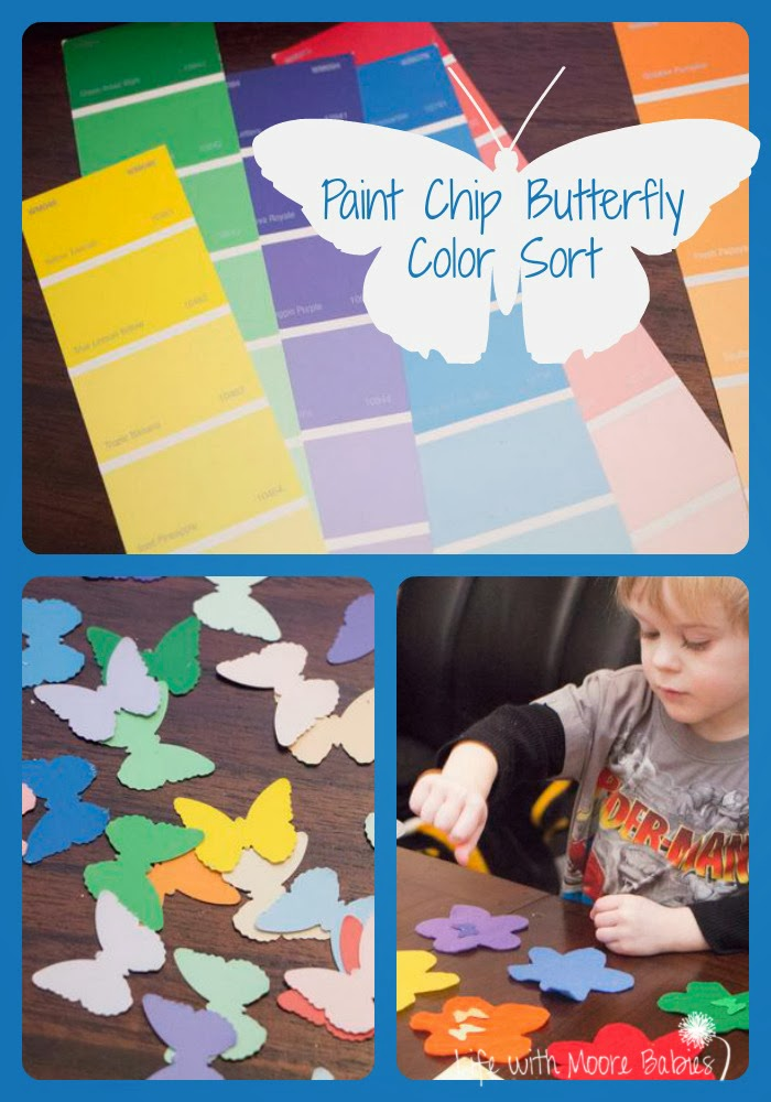 Paint Chip Butterfly Color Match