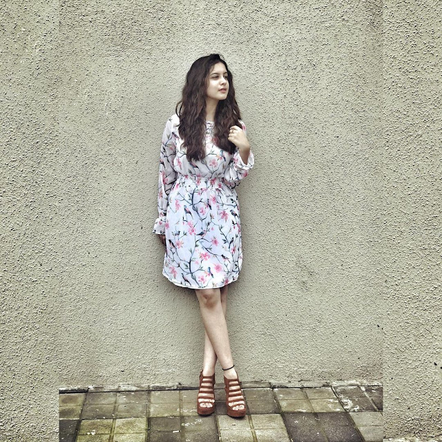 Tunisha Sharma  (Indian Actress) Wiki, Biography, Age, Height, Family, Career, Awards, and Many More...