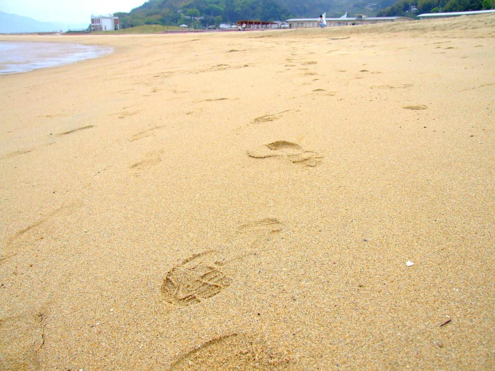 砂浜に付けられた足跡の写真素材です。あしあとは、振り返りなどのイメージを与えます。解説系記事のアイキャッチなどにいかがでしょうか。