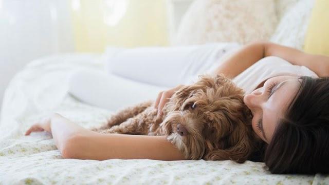 Γιατί πρέπει να αγκαλιάζουμε τα σκυλιά μας όσο πιο συχνά μπορούμε