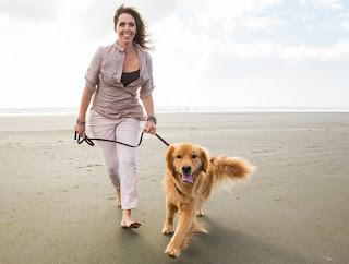 Buy a Pet Service Business in Sarasota