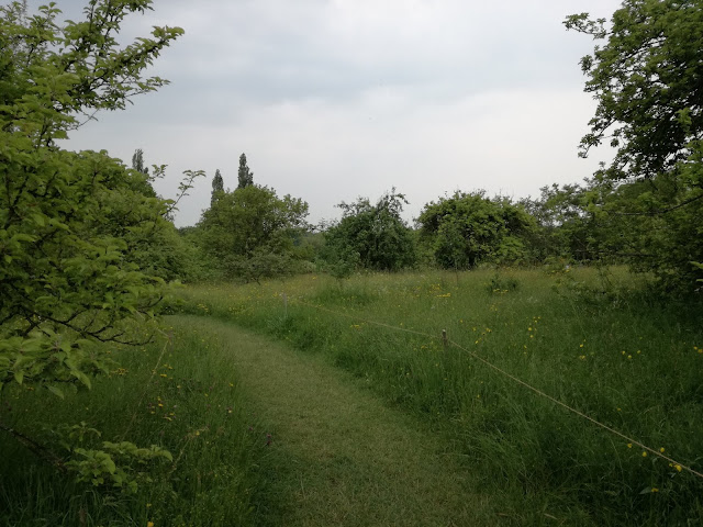 The Orchard, Sad
