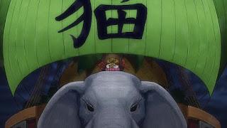 ワンピースアニメ 989話 ワノ国編 | ONE PIECE ネコマムシ NEKOMAMUSHI CV.池田勝