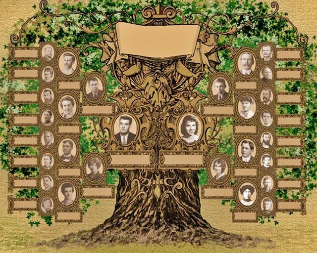 przyklad drzewa genealogicznego