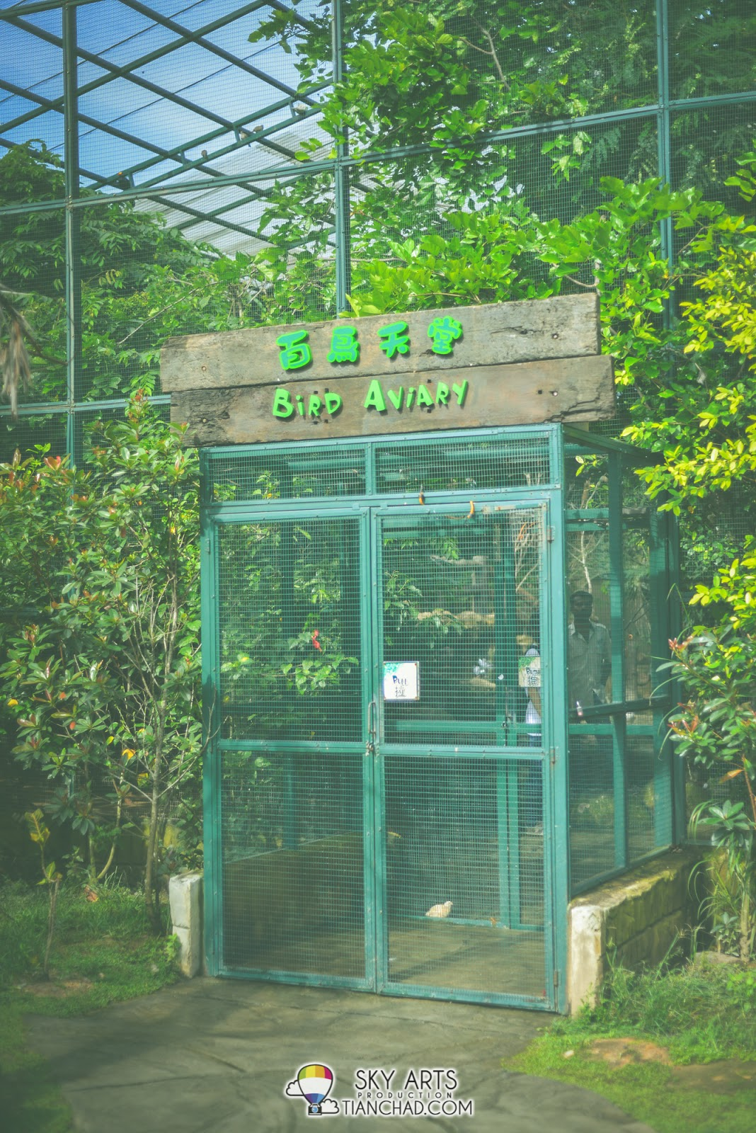 Bird Aviary - A place that kids will enjoy feeding the bird