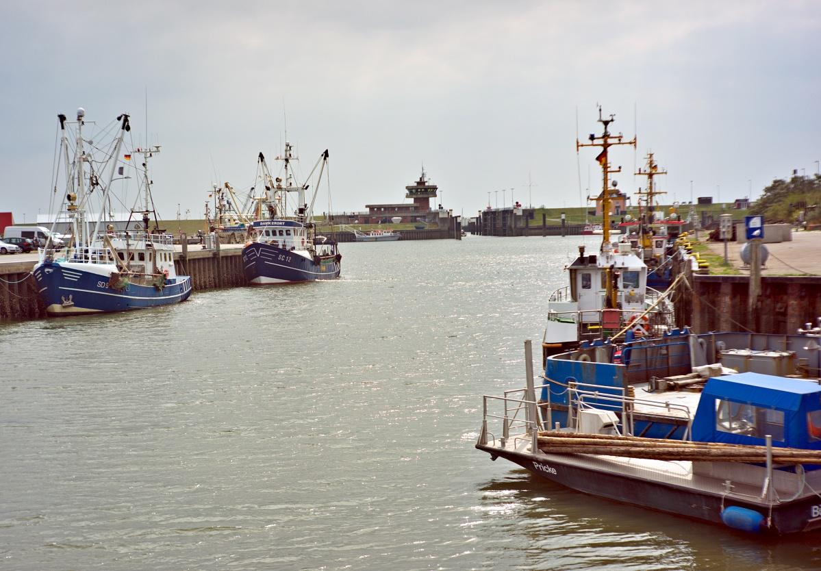 Im Büsumer Hafen (5)