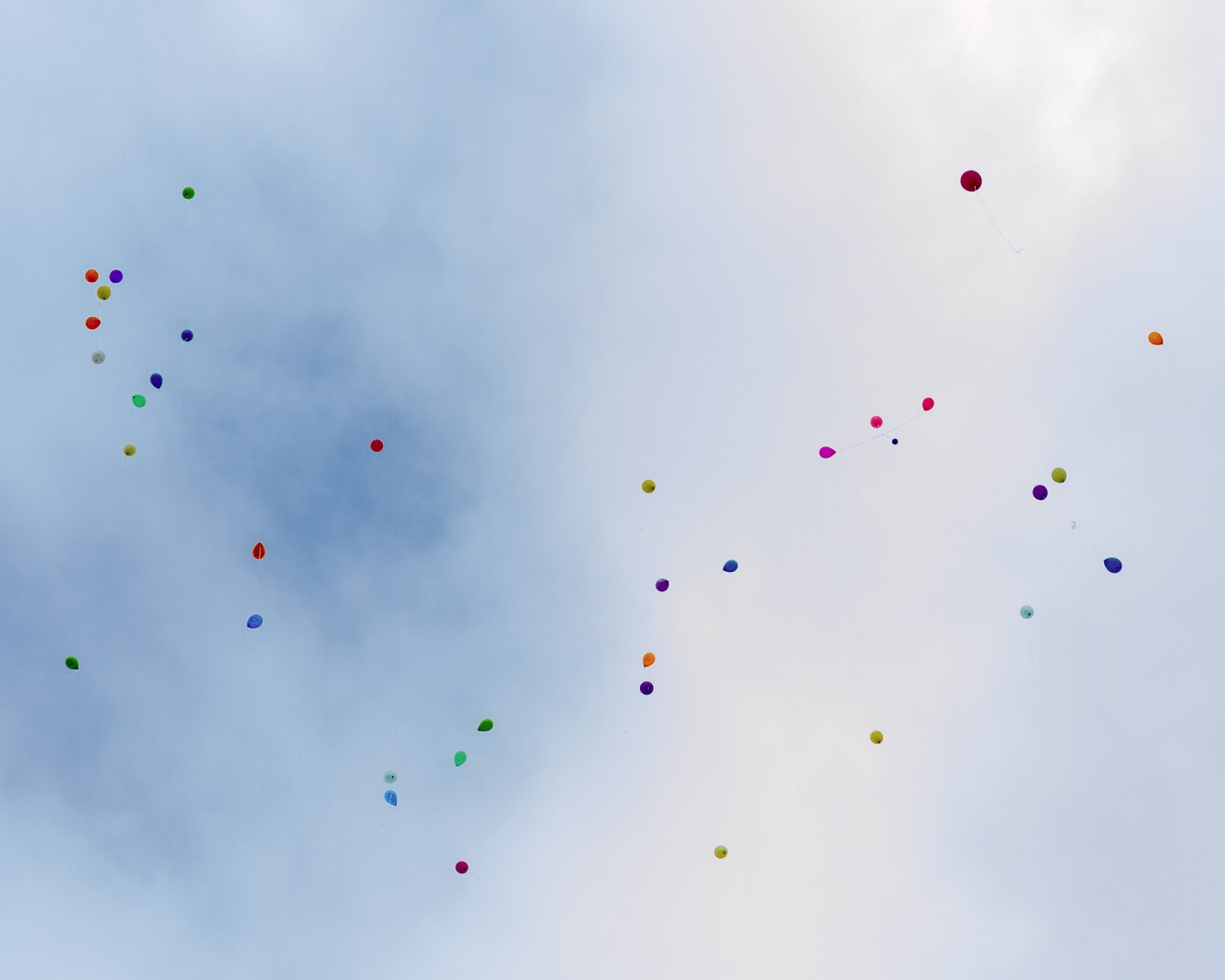 A Mothers Tears Annual Memory Walk Picnic And Balloon Release