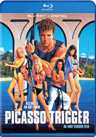 Picasso Trigger 1988 BluRay 300Mb UNRATED Hindi Dual Audio 480p