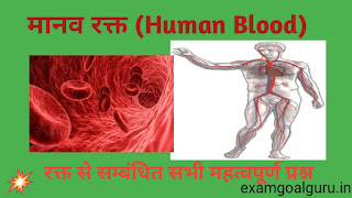 Blood related questions in hindi