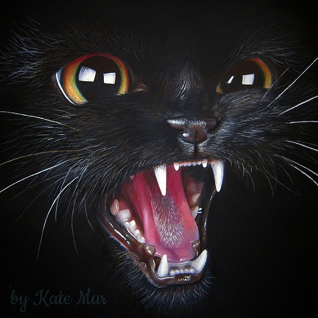 04-Black-Cat-Kate-Mur-Fantasy-and-Realism-in-Paintings-and-drawings-of-animals-www-designstack-co